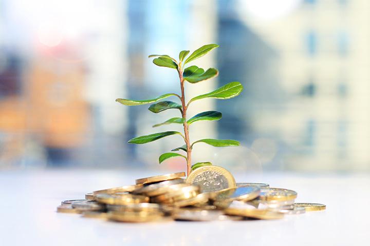 """Rückblick: Online Seminar """"Finanzielle Unabhängigkeit mit nachhaltigen Investments"""""""