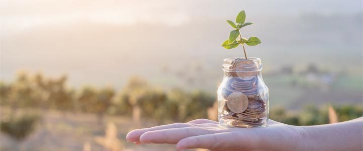 Nachhaltige Geldanlagen – Vorteile für alle