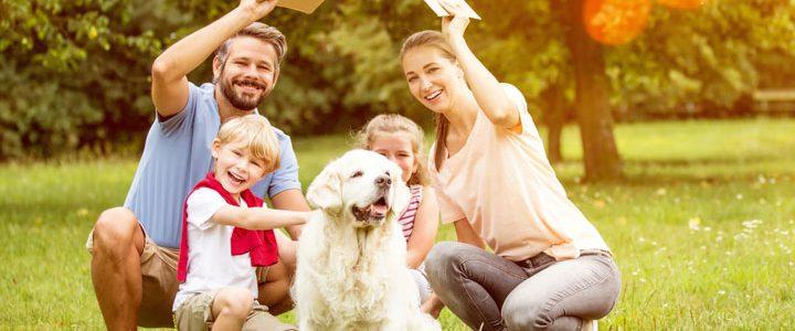 8 Lebensphasen:  Welche Versicherungen brauche ich?